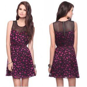 Forever21 Black Mesh Purple Polka Dot A-Line Dress